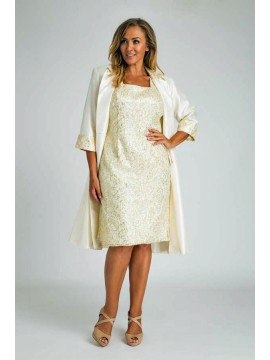 Special Occasion Sequin Lace Dress with Jacket in Ivory