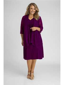 Robin Plus Size Jersey Dress in Purple