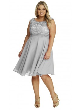 Special Occasion Lace and Chiffon Dress in Grey