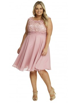 Special Occasion Lace and Chiffon Dress in Pink