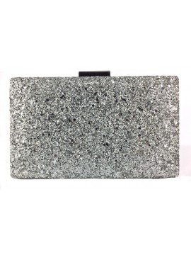 Hard Case Glitter Clutch in Silver