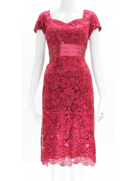 BJC Special Occasion Lace with Sequin Dress in Berry