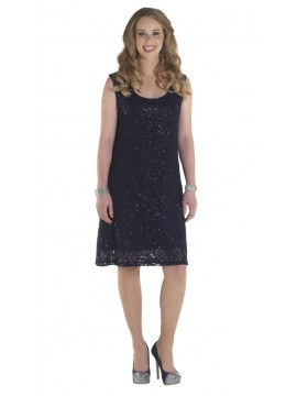Lorissa Plus Size Harlem Sequin Lace Dress