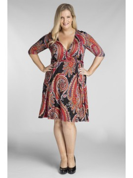 ALL STAR SPECIAL Classic Plus Size Wrap Dress in Paisley