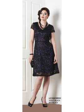 Lace Dress with Purple Lining